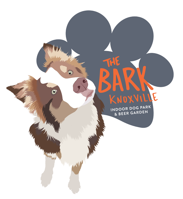 The Bark Knoxville t-shirt